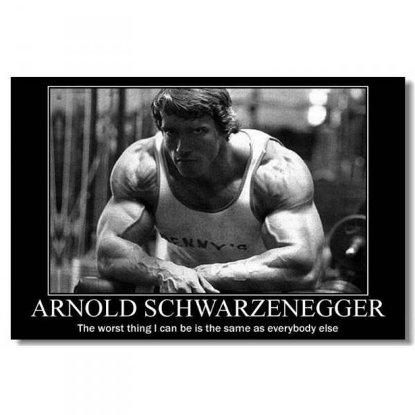 Arnold Schwarzenegger  Wall Silk Poster